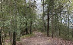 The Severn Run NEA Trail in Spring 2021.